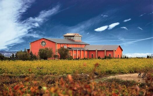 Winery and vineyards in Rioja region, Spain!