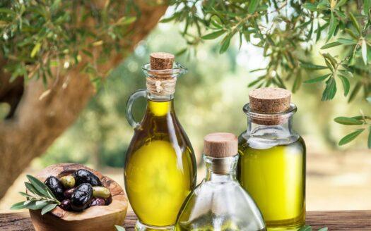 Fábrica productora de aceite de oliva en España!